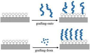 Grafting-onto and Grafting-from strategies