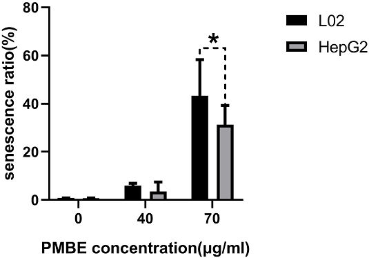 PMBE's effect on cell senescence of HepG2 cells