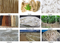 Photographs of sources of some natural fibers