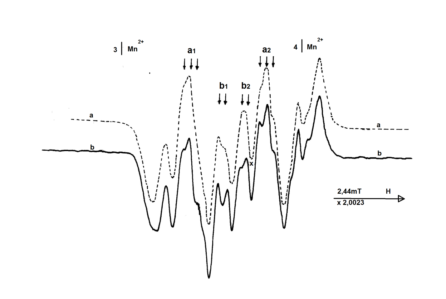 EPR spectrum of irradiated L-a-anhydrous asparagine sample