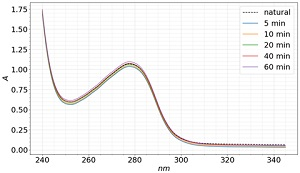 The UV absorption spectra of BSA